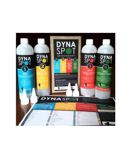 Dynaspot 1
